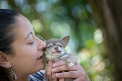 Photograph of a woman lovingly holding her tiny dog